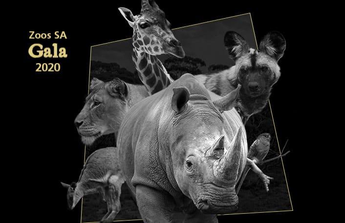 Zoos SA Gala
